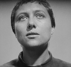 Renee Falconnetti