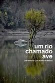 Um Rio Chamado Ave