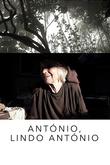 António, Lindo António