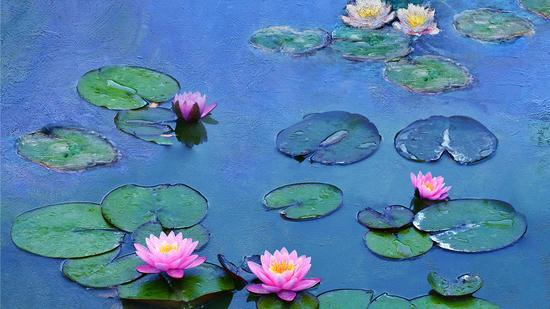 Monet - Magia de Luz e Água