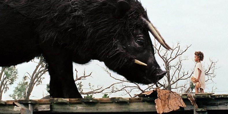 Bestas do Sul Selvagem