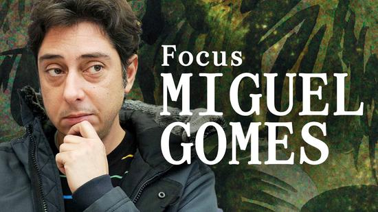 Focus Miguel Gomes
